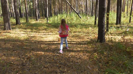 fegyelem : A lonely little girl lost her way in the autumn forest. A girl wanders with a wooden stick.