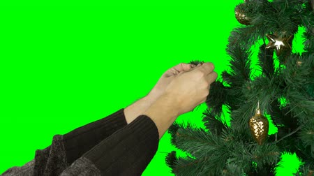 tenso : Slow motion close up. Alpha Channel transparent background. Mans hand hange golden ball to green branch of christmas tree. Prepairing to celebrate Marry Christmas and Happy New Year. Concept holiday. Vídeos