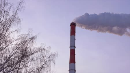 huni : Industrial chimney stack at heat power station on background sky and bare trees