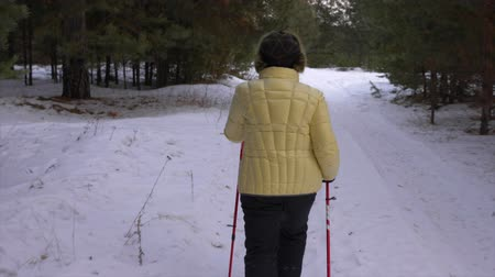aerobik : Back view of woman walks through winter forest with scandinavian nordic poles. Stok Video