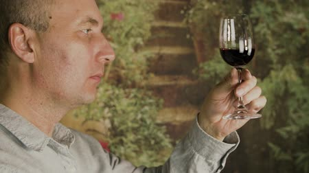 şarap kadehi : Portrait adult man drinking red wine from glass during testing wine close up. Man show thumbs up gesture. Stok Video