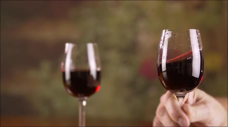 şarap kadehi : Close up male hand taking glass with red wine and stirring slow motion