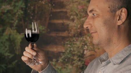 şarap kadehi : Portrait man winemaker looking on red wine in glass and drinking for degustation Stok Video