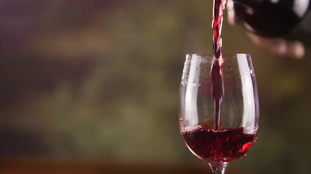 selektif : Person pouring red wine from bottle into wine glass Stok Video