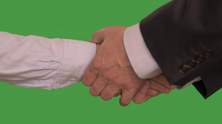 parceiro : Cropped view of business man handshake woman hand after deal. Alpha channel, keyed green screen. Two hands. Stock Footage