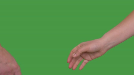 companionship : Handshake male and female hands business meeting isolated on green background Alpha channel, keyed green screen Stock Footage