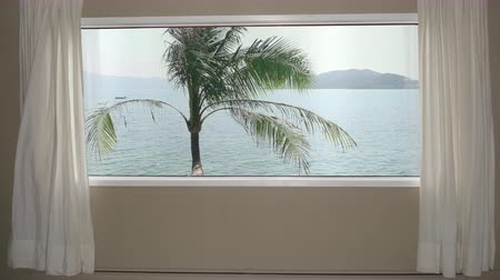 интервью : View from window in room hotel palm tree on background blue sea water and hills. Background plate, chroma key video background.