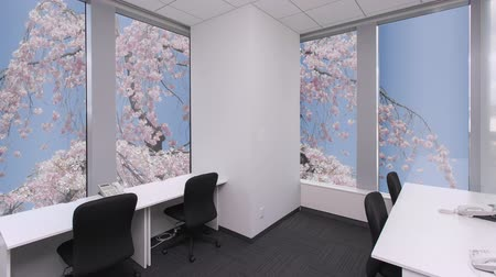 borrifador : Empty call cente with phones, sakura bloom outside the window