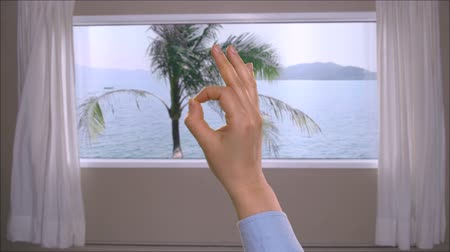 okey : Female hand showing ok sign on background window with view on palm tree in sea
