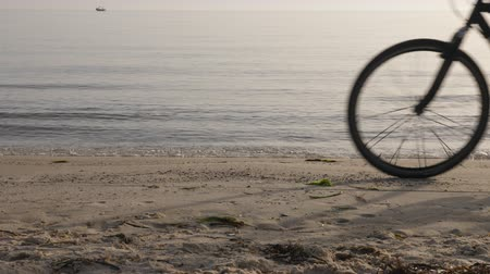 ciclismo : Person riding bicycle and traveling on beach near sea , cropped view