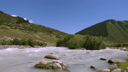montanhas rochosas : Mountain river flowing in valley on background highlands and green fields Stock Footage