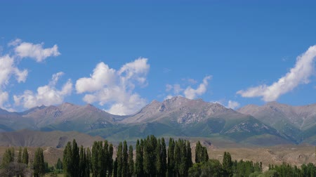 calma : Tian Shan mountains with trees and clouds on blue sky, timelapse view Vídeos