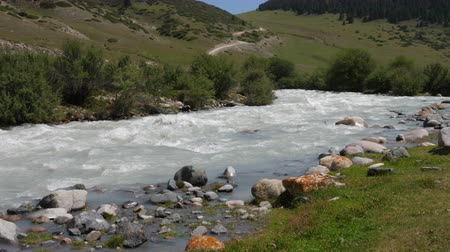 alpes : Mountain river with water stream and stones in canyon valley Stock Footage