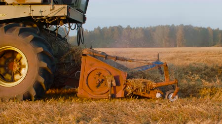 furrow : Combine harvester working on oat field in autumn in slow motion Stock Footage