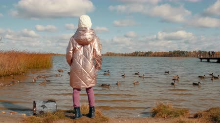 hlad : Teenager girl feeding ducks on pond in autumn park on sky landscape back view