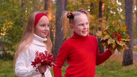 üvez ağacı : Portrait of cheerful girls holding bouquets with autumn leaves and rowan Stok Video