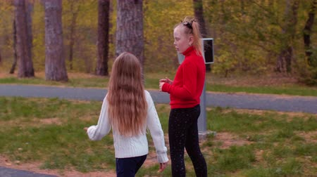 gyroscope : Adorable girls walking and riding gyroscope on road in autumn park in evening