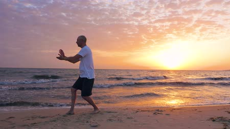 sea monkeys : Man training Taijiquan on sea beach during beautiful morning sunrise Stock Footage