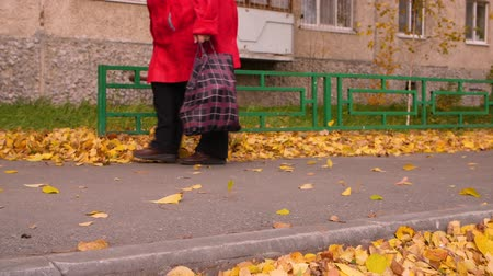 bolsa : Senior woman walking on footpath with grocery bag in autumn park Stock Footage