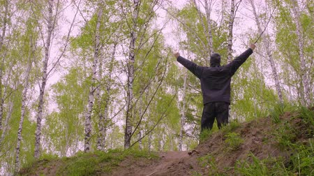cheerfulness : Cheerful man raising hands up standing on highlands on birch trees background Stock Footage