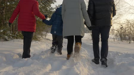 filha : Family walking in the winter park. Rear view family holding together their hands and walking in the winter forest. Slow motion Vídeos