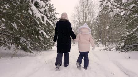 xale : mother and daughter walking together in woods. Back view woman and a little girl walking snowy path into winter forest while holding hands. Slow motion