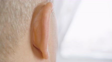 earlobe : Male head and eat back view. Adult man with gray hair moving ear rear view. Otolaryngology and hearing health. Parts of face and body. Human anatomy