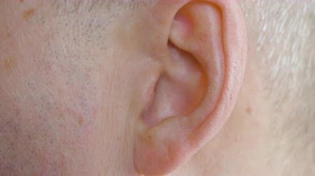 megvitatása : Male ear close up. Close up view man moving his ear, body part. Medicine and health concept.