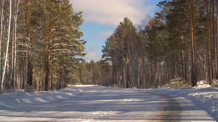 asfalt : Empty car road and snowy forest in countryside at winter day. Winter landscape snowy car roan and forest. Winter nature concept. Background for composing winter outdoors