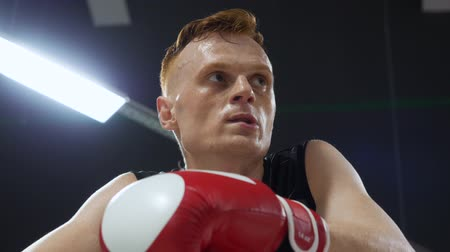 boksör : Portrait young boxer man in red gloves talking together rest in fight club. Sweaty boxer relaxing after fight training in boxing ring low angle view. Sport lifestyle Stok Video