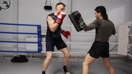 kolano : Fit Sportsman Caucasian Boxer Mma Fighter Training. Aggressive Man Kickboxer Exercise at Boxing Ring with Partner. Young Champion Practicing with Strong Coach or Assistant. Active Attack