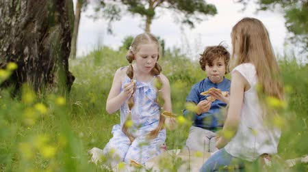 piknik : Carefree teenagers eating pizza at green lawn while summer picnic. Teenager girls and boy eating pizza while summer camping on blooming fields. Summer vacation activity. Glade with dazy flowers meadow Stok Video