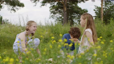 přestupek : Childrens quarrel during the walk. Gender difference in friendship perception. Two children teen girls offended boy sitting on glade together on picnic and he got up and left. Dostupné videozáznamy