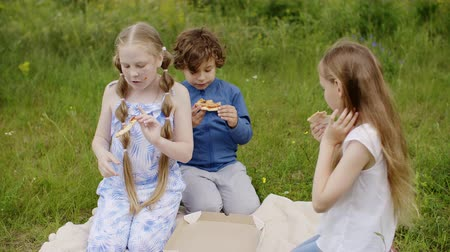 kamilla : Children Group Spend Summer Time on Daisy Glade. Friends Sitting at Green Grass in Park. Caucasian Teenager Girl Eat Pizza Snack. Little Offended Boy Walk out from Sister. Childhood Outdoor Sunny Day
