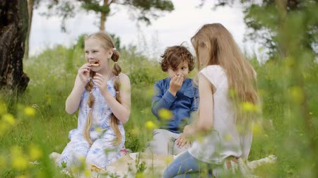 kamilla : Children are having a lunch walking on the glade. Teens two girls and boy eat pizza on picnic sitting on meadow among wildflowers. Friends spend time together in park. Stock mozgókép