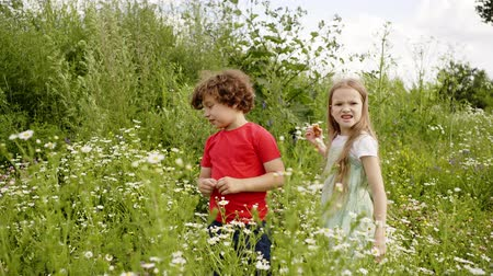 kamilla : Angry Couple Teens Walk High Grass Blossom Meadow. Caucasian Friends Throw Flower Heads Bushes Background. Boy Girl Stroll Bright Glade Summertime Nature Landscape Free Time Activity Holidays Concept Stock mozgókép