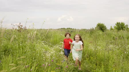 kamilla : Teens girl and boy are playing in catch on meadow at summer vacation. Girl is running for boy wanting to catch him. Outdoor activities on nature, having a fun time. Happy childhood.