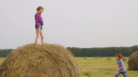 palheiro : Caucasian Children Playing on Haystack Sunny Day. Blond Little Girl Stand on Dry Hay. Active Brother Try to Climb on Stack of Yellow Straw. Happy Active Sibiling Spend Time on Countryside Stock Footage