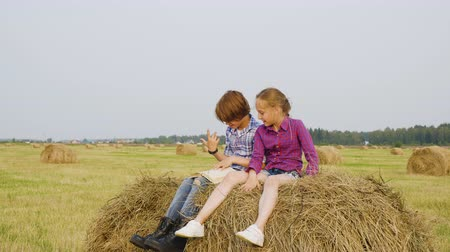 hay pile : Girl and boy teenagers sitting on haystack at harvesting field. Happy boy and girl reading book on hay stack at autumn field. Teenagers having fun in countryside