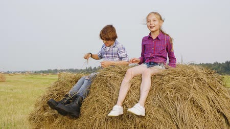 szénaboglya : Slow motion girl and boy jumping hay stack at harvesting field in countryside. Cheerful teenagers girl and boy having fun on haystack in farmland. Children scattering dry straw on haystack Stock mozgókép