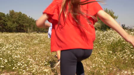 runaway : Happy girls running on meadow. Back view of two adorable happy kids running on field with beautiful white flowers at summer day. Summertime concept Stock Footage