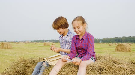 hay pile : Teenager boy and girl sitting on haystack at countryside field. Carefree boy and girl reading book on hay stack at harvesting field. Teenagers spending vacation in village