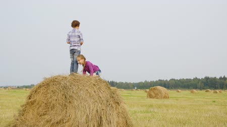 szénaboglya : Teenager girl and boy jumping on hay stack at countryside field. Happy teenagers throwing dry straw from haystack in village. Children having fun in farmland
