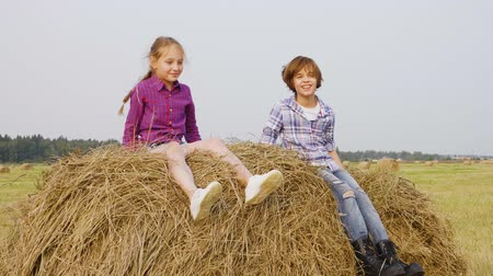 boyhood : Children jumping on haystack. Slow motion of cute happy boy and girl jumping, sitting and playing on haystack in field.