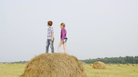 szénaboglya : Children playing on haystack. Cute happy girl and boy dancing and jumping on haystack on field. Childhood concept