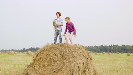 palheiro : Girl Boy Play Haystack Straw Harvest Time Field. Joyful Couple Caucasian Children Stand Top Wheat Bale Summertime. Happy Kids Enjoy Countryside Scenery Nature Friendship Holiday Concept