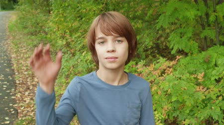 komar : Portrait teenager boy catching mosquito or fly in summer park. Playful boy teenager waving hands for catch flying mosquito in green park Wideo