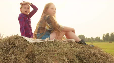 bales : Two teenager girls sitting on top hay stack at harvesting field in village. Carefree girl teenagers relaxing on haystack on autumn field on sunshine backlight Stock Footage