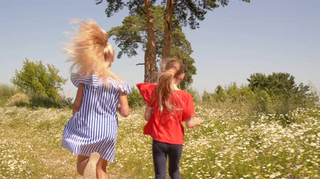 kamilla : Happy Couple Girls Run Blossom Meadow Back View. Cheerful Children Enjoy Bloom Field Scenery Daisies Glade Outdoor Nature. Caucasian Female Kids Chamomile Flowers Lawn Summer Holidays Concept Slow 4K