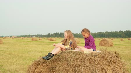 palheiro : Cute girls sitting on haystack. Vertical motion of two adorable girls in checkered shirts sitting on haystack and talking in field during harvest.